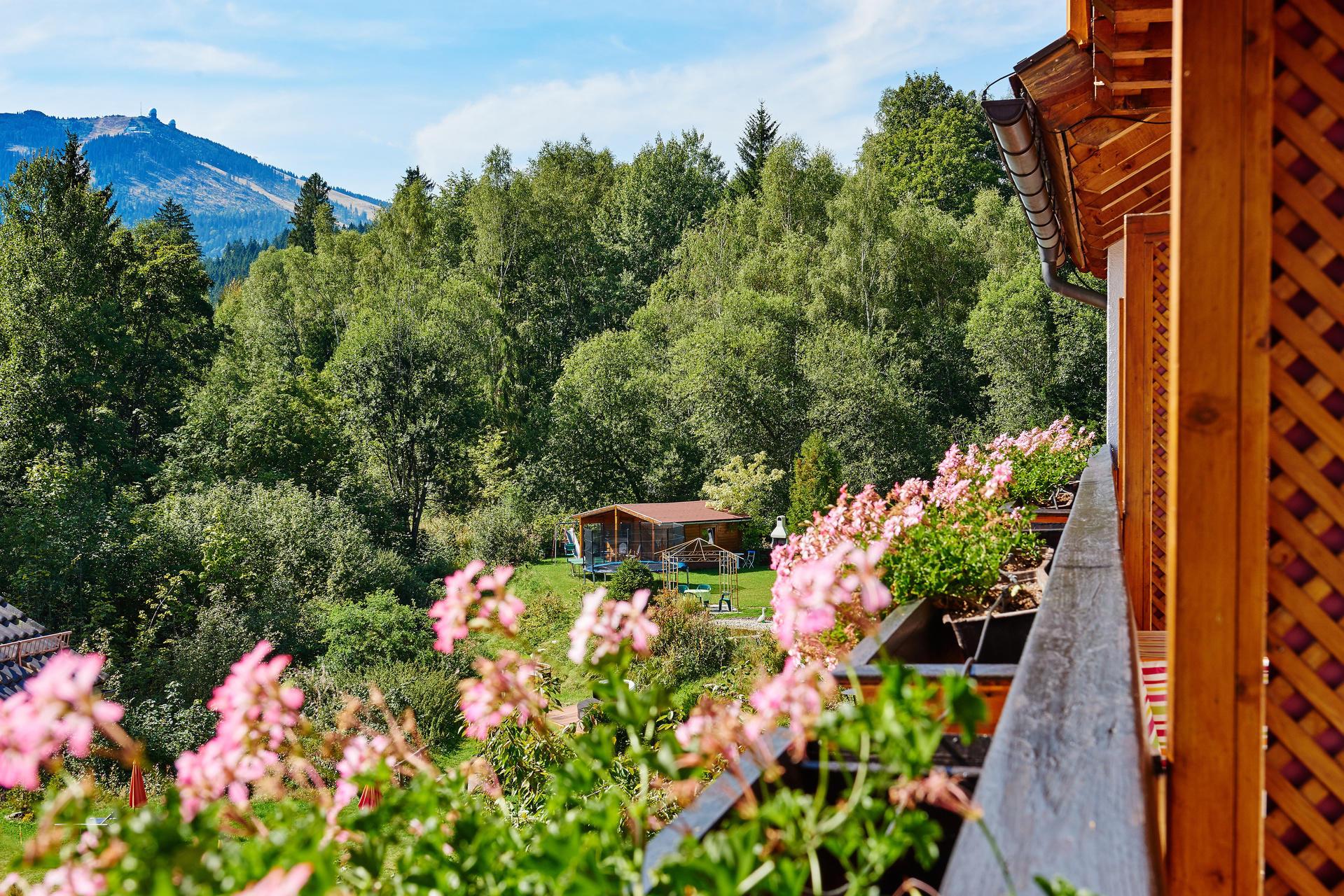 Hotels Arber Wellnesshotels Bayerischer Wald Grosser Arber Wellness